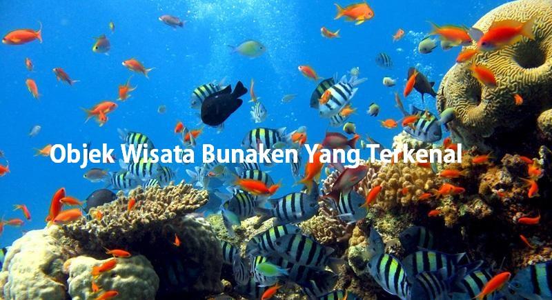 Objek Wisata Bunaken Yang Terkenal
